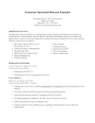 Summary On A Resume Example Summary Resume Sample Career Summary For
