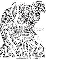 coloring book page for and children zebra in zentangle style knitted hat