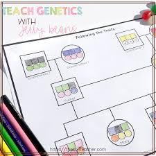 Teach Genetics With Jelly Beans The Owl Teacher