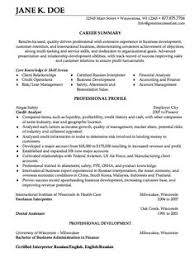 sample credit analyst resumes