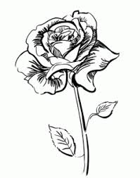 Small Picture Flowers How to draw a rose step by step Fashion Inspiration