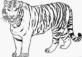 Small Picture Printable Coloring Pages Tiger
