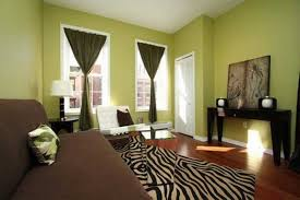 green and brown living room decorating ideas