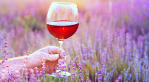 a woman holds a glass of rose wine in front of a field of lavender