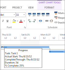 Track Percent Complete For Tasks Project