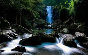 Animated Waterfall Wallpapers posted by ...