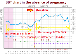 Sample Bbt Charts Showing Pregnancy The Normal Bbt In The Absence Of Pregnancy Charts