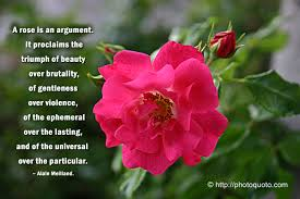 Quotes About Roses And Beauty Best of Images Of Roses With Quotes Sayings Quotes Chuang Tzu Roses