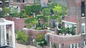 Small Picture Small but Stunning Rooftop and Deck Gardens YouTube