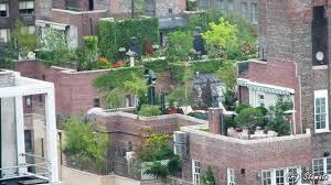 Small Picture Garden Design Garden Design with Rooftop Gardens on Pinterest