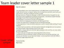 Example Of Resume Cover Letter For Customer Service Great Resumes