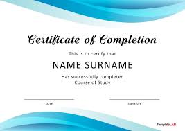 Training Templates For Word Training Certificate Format Doc Copy Of Participation
