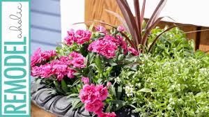 planting beautiful outdoor flower pots