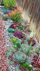 catchy outdoor succulent garden ideas