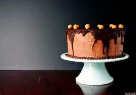 Chocolate Peanut Butter Birthday Cake Kita Roberts Passthesushicom