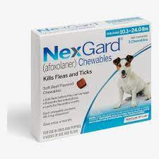 best tick treatment for dogs 2020 the