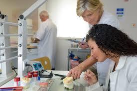 Dental Laboratory Technician Connecticut Area Health