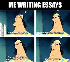 write essays for me me when i write essays gag write essay for me  me when i write essays gagme when i write essays