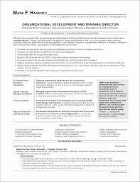 Insurance Agent Job Description For Resume Unique Sales Agent Resume Luxurious Insurance Agent Resume Template Best