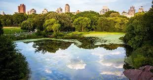 8 most beautiful neighborhoods to live
