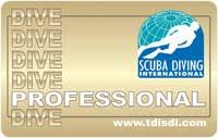 Image result for sdi open water instructor