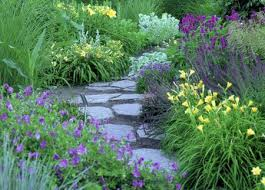 Small Picture Artistic perennial combinations landscape ontariocom Green for Life