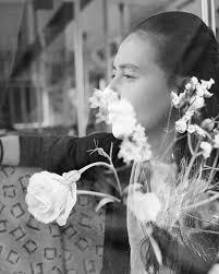 Orgen tunggal, mawar putih tanpa iklan di jamin goyang. Sandrayati Fay Home Facebook