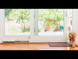 wayzn automatic sliding doors for pets