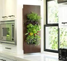 indoor herb garden ideas. Indoor-herb-garden-ideas-img-4 Indoor Herb Garden Ideas