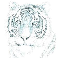 Simple Drawings Of Animals Patriotpork Co