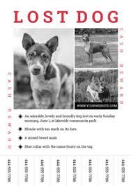Dog Flyer Template Free Free Lost Dog Poster Flyer Designs Designcap Poster Flyer Maker