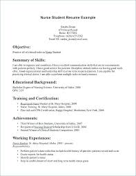 Nursing Student Resume Example Magnificent Entry Level Rn Resume Examples Kappalab