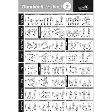 Dumbbell Exercises For Men Chart We Analyzed 2 784 Reviews To Find The Best Dumbbell