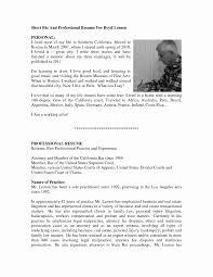 Resume Bio Example Resume Bio Summary Therpgmovie 27