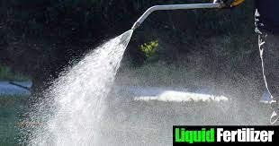 use liquid fertilizer concentrate