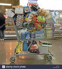 costco cart stock photos costco cart stock images alamy overloaded shopping cart at costco discount market in queens new york stock image