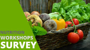 holistic nutrition works topic survey life therapies health and wellness centre ottawa