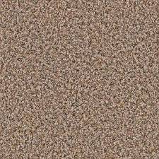 tan carpet floor. Brilliant Tan Calico  On Tan Carpet Floor I
