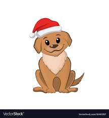 Brown puppy in christmas hat cute dog ...