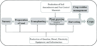A General Flowchart Of The Cradle To Farm Gate Life Cycle