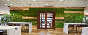 Natural concept small office Magazine Office Green Wall Ambius Ultimate Guide To Office Plants Ambius