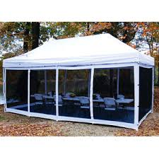 king canopys 10 x 20 bug screen room for explorer pop up canopy