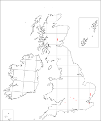 Salvia glutinosa | Online Atlas of the British and Irish Flora