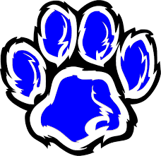 Image result for wildcat clip art