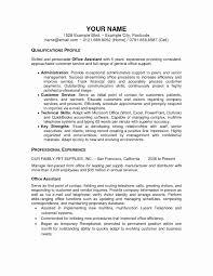 Executive Assistant Resume Sample Awesome Bination Resume Sample