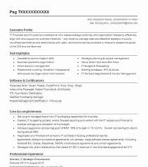 Purchasing Resumes Purchasing Resume Old Version Agent Sample dwighthowardallstar 20