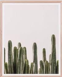 framed print desert vista blush on cactus wall art framed with the 52 best wall art images on pinterest art walls entrance doors
