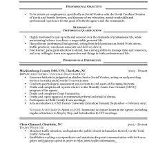 Famous My First Resume Tips Gift Documentation Template Example