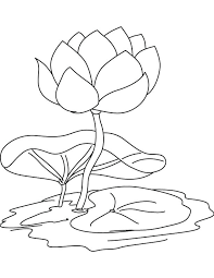 Small Picture wonderful Glamorous Lily Pad Coloring Page Online Water Flower And
