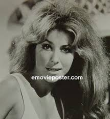 Michele Carey was an actress from the 1960s to the 1980s. Some of her movie roles include El Dorado, The Spy with My Face, and Dirty Dingus Magee - Michele%2520Carey